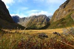 fiordlandmilford nya sound zealand arkivfoto