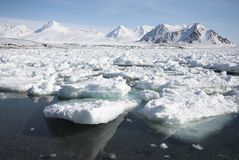 Fiordo congelado paisaje ártico Imágenes de archivo libres de regalías