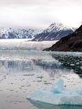 Fiordo della baia di ghiacciaio immagini stock libere da diritti