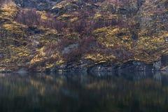 Fiordo e una montagna eterogenea Fotografia Stock