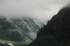 Fiordo en niebla de la mañana Foto de archivo