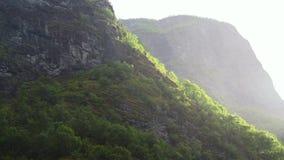 Fiordo en Noruega - fondo de la naturaleza y del viaje almacen de video