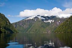 Fiordo nebbioso, Alaska Immagini Stock Libere da Diritti