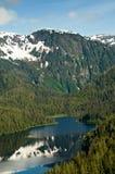 Fiordo nebbioso di Flyover, Alaska Fotografie Stock Libere da Diritti
