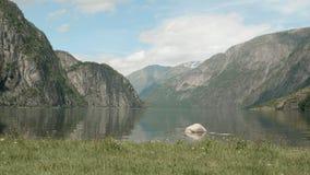 Fiordo nelle montagne norway Colpo liscio del carrello video d archivio