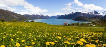 Fiordo norvegese in Sunnmore Immagini Stock Libere da Diritti
