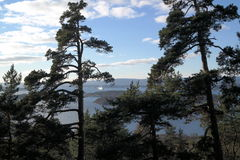 Fiordo Norvegia di Oslo di vista del parco di Ekeberg Immagine Stock