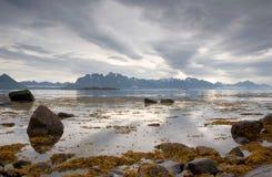 fiordu Norway Obraz Stock