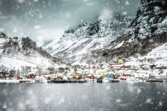 fiordy Norway Obraz Royalty Free