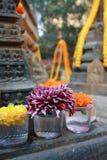 Fiore al tempio di mahabodhi Immagine Stock