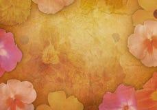 Fiore antico Backgound dell'annata Immagini Stock Libere da Diritti