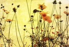 Fiore antiquato fotografia stock libera da diritti