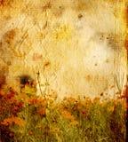 Fiore antiquato immagine stock