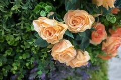 Fiore arancio e giallo artificiale alto chiuso della rosa fatto da sil Immagine Stock Libera da Diritti