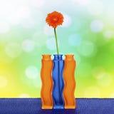 Fiore arancione del gerbera in vaso Immagine Stock