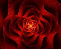Fiore ardente, il fiore rosso di amore Fotografie Stock