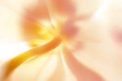 Fiore astratto