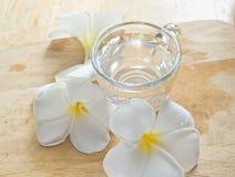 fiore bianco con vetro Fotografia Stock