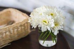 Fiore bianco del crisantemo in vetro Fotografia Stock Libera da Diritti