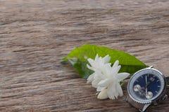 Fiore bianco del gelsomino su fondo di legno, orologio marcatempo Fotografia Stock