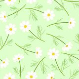 Fiore bianco dell'universo su fondo verde Illustrazione di vettore illustrazione di stock