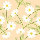 Fiore bianco dell'universo sul fondo beige dell'avorio Illustrazione di vettore illustrazione vettoriale