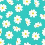 Fiore bianco dell'universo sul fondo blu della menta Illustrazione di vettore illustrazione di stock