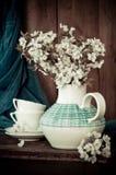 Fiore bianco della sorgente Fotografia Stock
