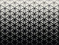 Fiore in bianco e nero di pendenza della geometria sacra astratta del modello del semitono di vita illustrazione vettoriale