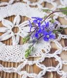 Fiore blu sulla tavola di legno Fotografia Stock Libera da Diritti