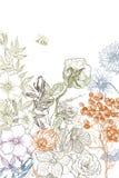 Fiore botanico d'annata dell'illustrazione Valentino del cuore su fondo bianco Concetto di Botanica Disegno di vettore royalty illustrazione gratis