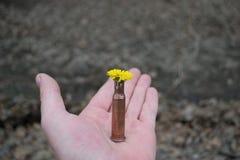 Fiore in cartuccia-caso immagine stock
