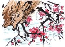 Fiore cinese della prugna della riva del fiume della pittura Fotografia Stock