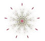 Fiore complesso della mandala Illustrazione di Stock