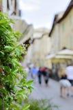 Fiore con le case e la gente vaghe Fotografia Stock Libera da Diritti