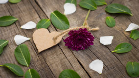 Fiore con un cuore Fotografia Stock