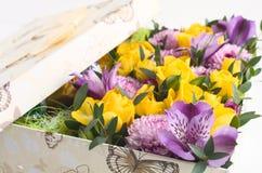 Fiore in contenitore di regalo Fotografia Stock Libera da Diritti