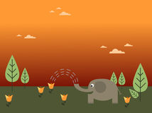 Fiore d'innaffiatura dell'elefante Fotografia Stock Libera da Diritti