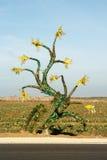 Fiore dalle bottiglie di plastica L'idea di riciclaggio e di riduzione residua Fotografie Stock Libere da Diritti