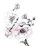 Fiore decorativo della ciliegia in fiore illustrazione vettoriale