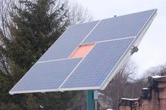 Fiore del comitato solare Fotografia Stock Libera da Diritti