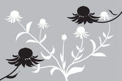 Fiore del cono in nero & nel bianco illustrazione vettoriale