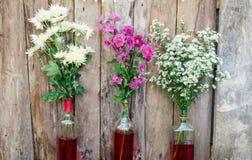 fiore del crisantemo su fondo di legno Immagini Stock