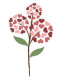 Fiore del cuore Fotografia Stock