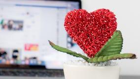 Fiore del cuore con il concetto sociale online di amore di media Fotografia Stock