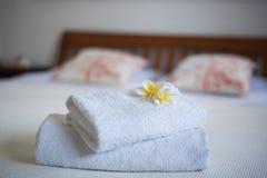Fiore del frangipane sul letto Immagine Stock