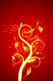 Fiore del fuoco Fotografia Stock Libera da Diritti