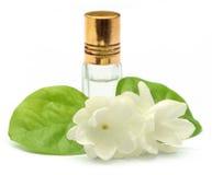Fiore del gelsomino con la bottiglia dell'essenza Fotografia Stock