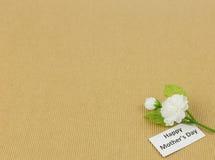 Fiore del gelsomino - fondo di giorno di madre Fotografia Stock