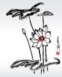 Fiore del loto Fotografia Stock